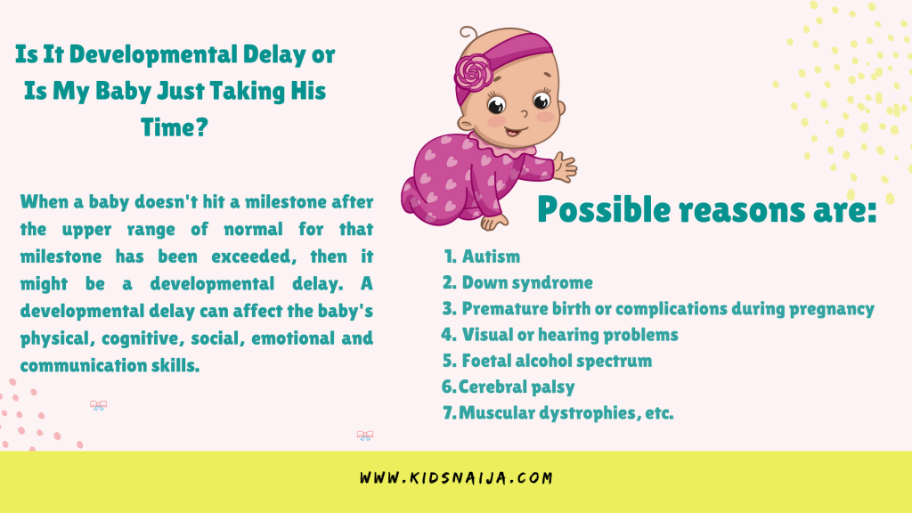 Is It Developmental Delay or Is My Baby Just Taking His Time_
